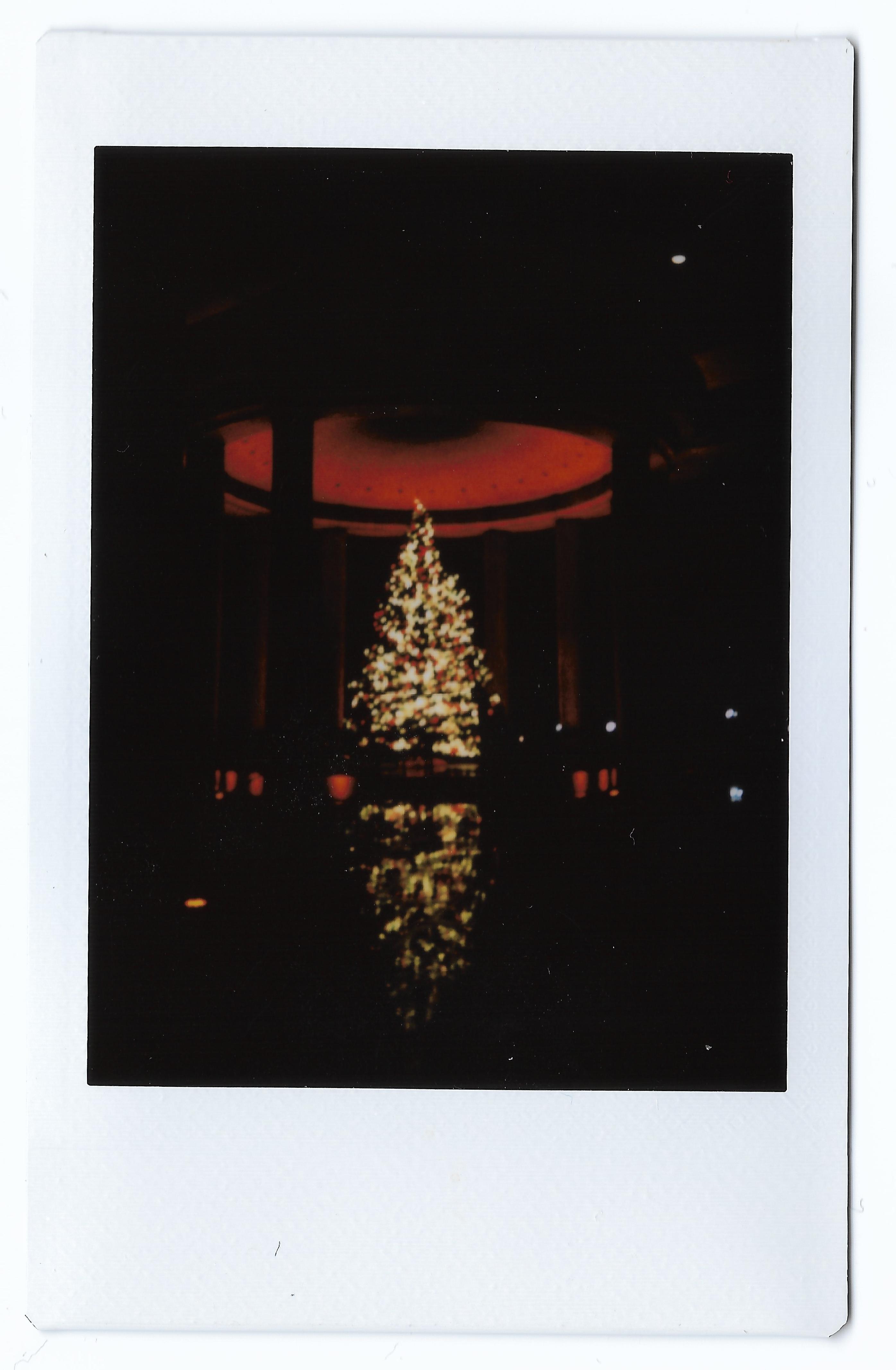 canadian embassy christmas tree